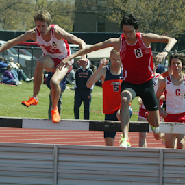 A jump in the steeple chase by Alec Halstead - Sports & Fitness Other Sports