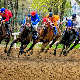 Horse Races-283-Edit.jpg