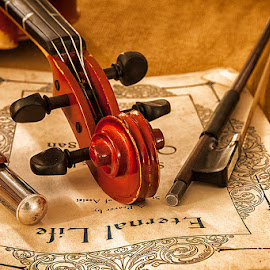 by Walter Farnham - Artistic Objects Musical Instruments (  )