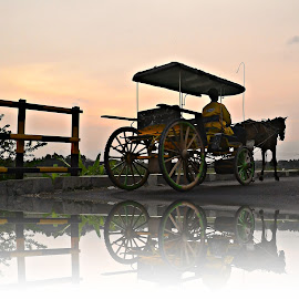 horse-drawn carriage by Yudi Dhaniwanto - Digital Art Things ( reflections )