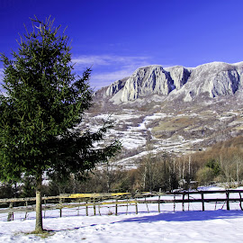 Vulcan peak by Marius Turc - Landscapes Mountains & Hills ( apuseni, winter, sky, tree, romania )