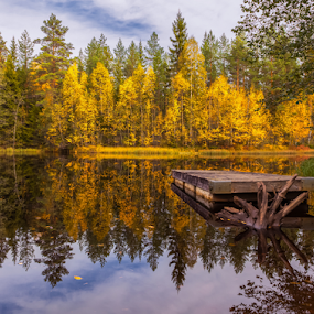 Autumn by Rose-marie Karlsen - Uncategorized All Uncategorized ( reflection, peacful, autumn, trees, landscape,  )
