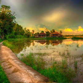Sekayu by Mursyid Alfa - Landscapes Prairies, Meadows & Fields