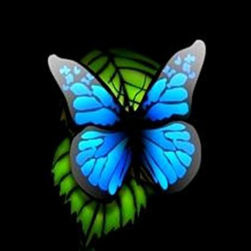3D 青い蝶2 益智 App LOGO-APP試玩