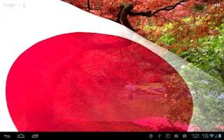 Screenshot of Flags of Asia Live Wallpaper
