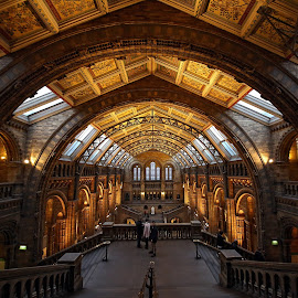 long view at NHM by Almas Bavcic - Buildings & Architecture Public & Historical
