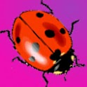 Cute Ladybugs Donation icon