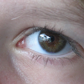 reflection in the eye by Monique Coen - People Body Parts ( detail, reflection, eyelashes, eyeball, eye,  )