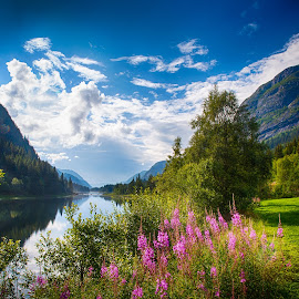 Summer in Norway by John Einar Sandvand - Landscapes Mountains & Hills ( haukeligrend, norway )