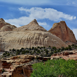 Capitol Dome by Erin Czech - Landscapes Deserts ( capitol reef national park, desert, utah, dome, rock formation )