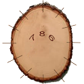Wood Clock icon