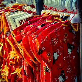 by Asridjaja Apolita - Artistic Objects Clothing & Accessories ( cheongsam, fifastufoni-fotografi, baju, clothing, fsf, gbk )