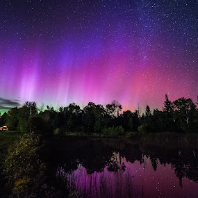 Aurora borealis over my back yard pond in Lee, Maine by Aaron Priest - Landscapes Starscapes ( reflection, lee, maine, aurora borealis, northern lights, andromeda, night, pond, night sky, back yard )