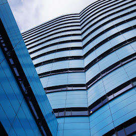 Blue tower 3 by Anita Berghoef - Buildings & Architecture Office Buildings & Hotels ( office, building, blue, architecture, looking up )