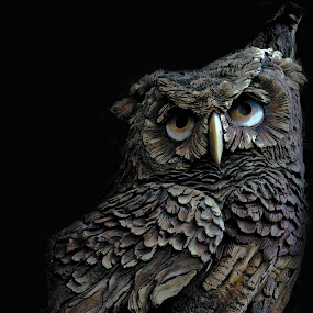 Whooo by Sheen Deis - Artistic Objects Other Objects ( carbings, birds, owls,  )