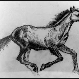 horse run by Sayantan Maity - Drawing All Drawing