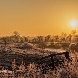Somerset Sunrise by Dan Ringrow - Landscapes Prairies, Meadows & Fields ( uk, frost, sunrise, landscape, somserset, britain )