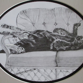 Lying Doggo by Marilyn Brown - Drawing All Drawing ( asleep, pepe )