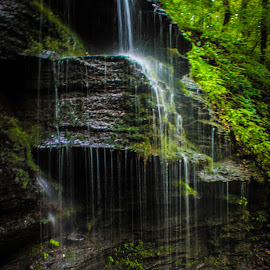Fall Hollow 2 by Holly Stokes - Landscapes Waterscapes ( natchez trace, waterfall, fall hollow )
