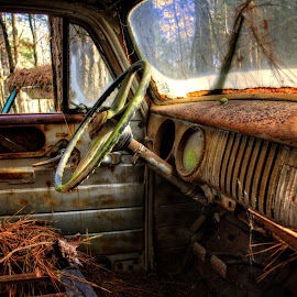 Inside An Old Truck by Greg Mimbs - Transportation Automobiles ( old, inside an old truck, truck, pine straw, automobile, pine needles, georgia, door, windshield, busted windshield, rusty, woods, old truck, greg mimbs, roof, dash, patina, window, seat, trees, auto, steering wheel, junk yard, rust )