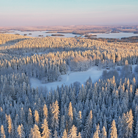 Kuopio from above by Mia Ikonen - Landscapes Forests ( winter, lakes, finland, forest, landscape )