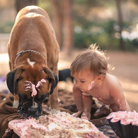 Let´s share by Fotografia Eva Stachova - Babies & Children Child Portraits ( cake, share, nature, celebration, baby, dog, bokeh, woods )