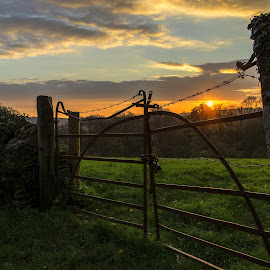 The rusty old gate by Karen Buttery - Landscapes Prairies, Meadows & Fields ( field, tranquil, old, sunset, barbed wire, rusty, gate )