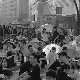 Umbrella Movemont by Ramsey Pui - News & Events Politics ( protesters, universal suffrage, revolution, umbrella, democracy )