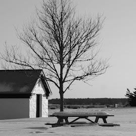 Peaceful... by Susanne Carlton - Landscapes Weather (  )