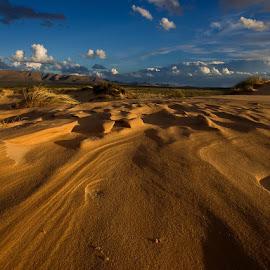 Sand patterns  by Coerie Ferreira - Landscapes Deserts
