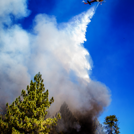 Fire Fight by Ken Wade - News & Events Disasters ( helicopter, flames, mt. pinos, forest fire, kern county, fire fighter, fire, water drop )