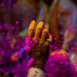 Holi by Debajit Bose - Digital Art Abstract ( festival of colors, varanasi, india, debajit bose, holi )