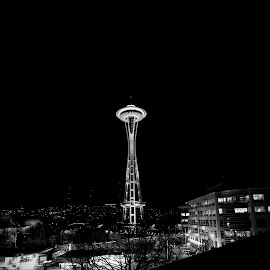 Yeah, just another photo of the Space Needle-- every photograph I take is attached to a split moment in time, photo's trigger memories and emotions, sometimes so vivid I feel like I'm being transported back  This photo is one of those photos with a strong memory attached, I usually avoid looking at it very long. by Chad Lyons - Landscapes Travel
