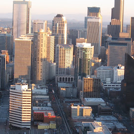 Downtown Seattle by Carrie Henderson - City,  Street & Park  Skylines (  )