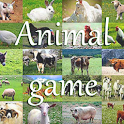 Animal Game IT icon