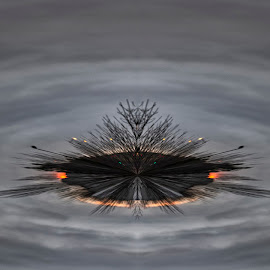 Apocalypse Chicago by David Uthe - Abstract Patterns ( sunset, polar coordinates )