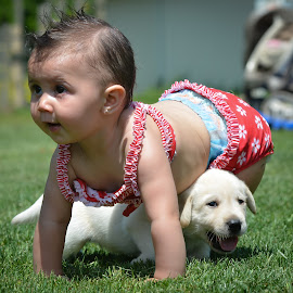 Nothing beats a puppy by Rob Ebersole - Babies & Children Toddlers ( puppy, yellow, baby, labrador, toddler, lab )