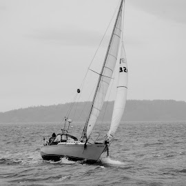 Windy Day by Hayden Terjeson - Transportation Boats ( water, washington, wind, nikon, boat, sail boat, photography )