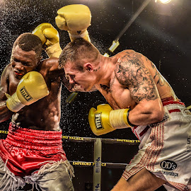 The Slammer by Alexius van der Westhuizen - Sports & Fitness Boxing ( golden gloves, martin murray, lounge, sport, boxing, emperor's palace, sports bar, bar, activity )
