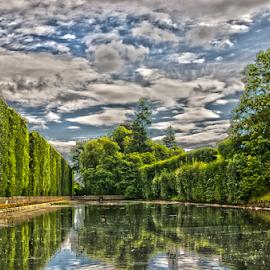by Aneta Helwich - City,  Street & Park  City Parks ( water, sky, tree, park, trees, city park, landscape,  )