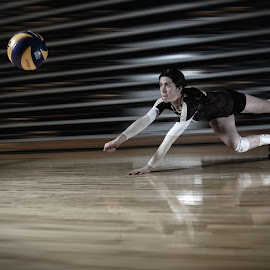 Dive by Amanda Gundrum - Sports & Fitness Other Sports ( hardwood, speed, volleyball, college, quick, dive, power, sport, athlete )