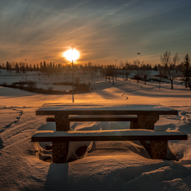 Millwood City Park by Joseph Law - City,  Street & Park  City Parks ( footprints, millwood, winter, snow, sunshine, edmonton, city park, picnic table, shadows )