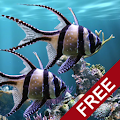 App The real aquarium - LWP APK for Windows Phone