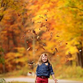 fall014web.jpg