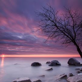 Where sky meets water by Edward Deiro - Landscapes Waterscapes ( milwaukee, waterscape, long exposure, sunrise, lavender )