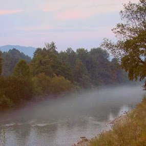 River in foggy Autumn by Nat Bolfan-Stosic - Uncategorized All Uncategorized ( foggy, wood, autumn, day, river )