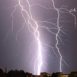 Electrical by Bojan Porenta - Landscapes Weather ( lightning, strike, electrical, electric, weather )