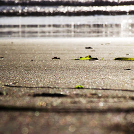 Simple Serenity by Helen Jamison - Nature Up Close Sand ( sand, serene, serenity, waves, beautiful, ocean, leaves, live )