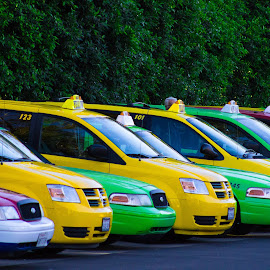 Taxis Waiting by Danielle Benbeneck - Transportation Automobiles ( taxi, pattern, color, bright, cars, transportation )