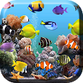 App Aquarium Live Wallpaper version 2015 APK